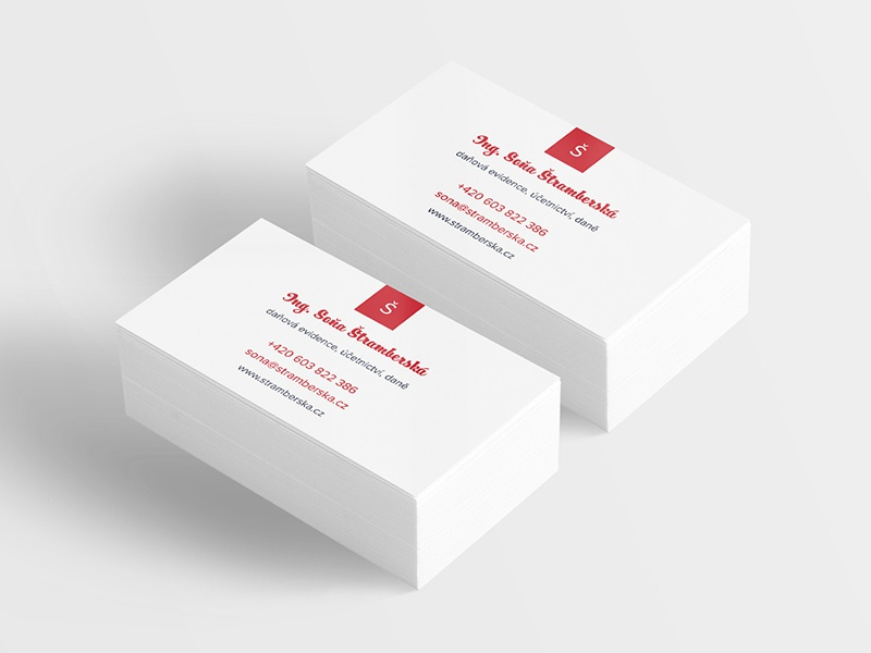 sona nahled - Accountant Business Card