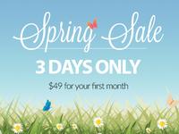 Spring Sale 2015 Header