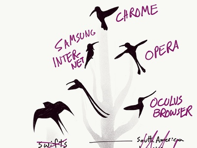 The great evolutionary chart of browsers browsers swifts hummingbirds