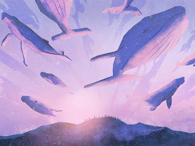 Whale dream illustration sky sunset flying purple dream mountains whales