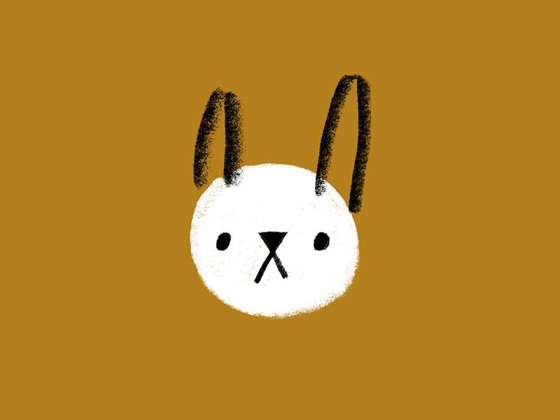 Bun Bun pet shapes dot face ears texture animal bunny rabbit