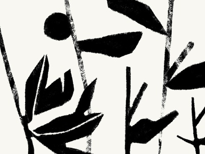 Wild neutral nature twigs texture pattern plants leaves forest botany wild