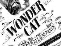 Wonder cat v2