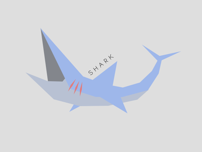 Shark ocean sea fish blue shark