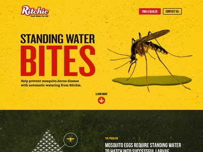 Standing Water Bites web design awareness product landing page ui mosquito water design responsive website web