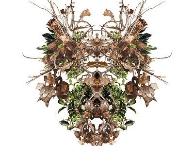 Kindled Autumn abstract macrophotography photoshop digital art nature photo manipulation