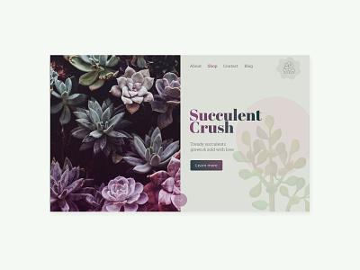 Succulent Crush concept colour minimal split screen purple succulent website concept homepage website website design