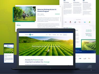Financial XS website design