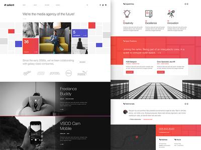 Salient app rockettheme joomla template ux user experience user interface web design design ui minimal clean
