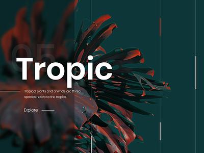 Tropic explore invitation black illustration banner follow enjoy ui ux dribbble creative design