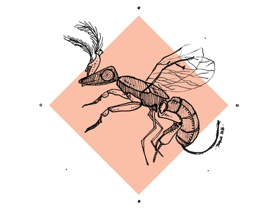 Fig Wasp pigment liner fig wasp illustration insects