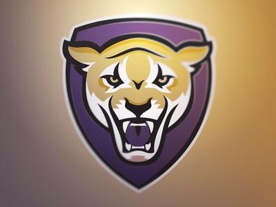 Panther Rebound