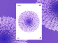 Poster 001 - Bloom