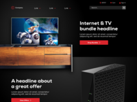 Internet Provider Homepage Concept