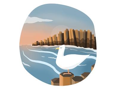 Seagull environment ocean cliffs digital art illustration bird wildlife coast sea seagull