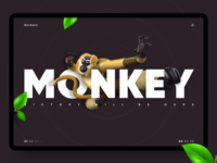 Kung Fu Panda — Monkey