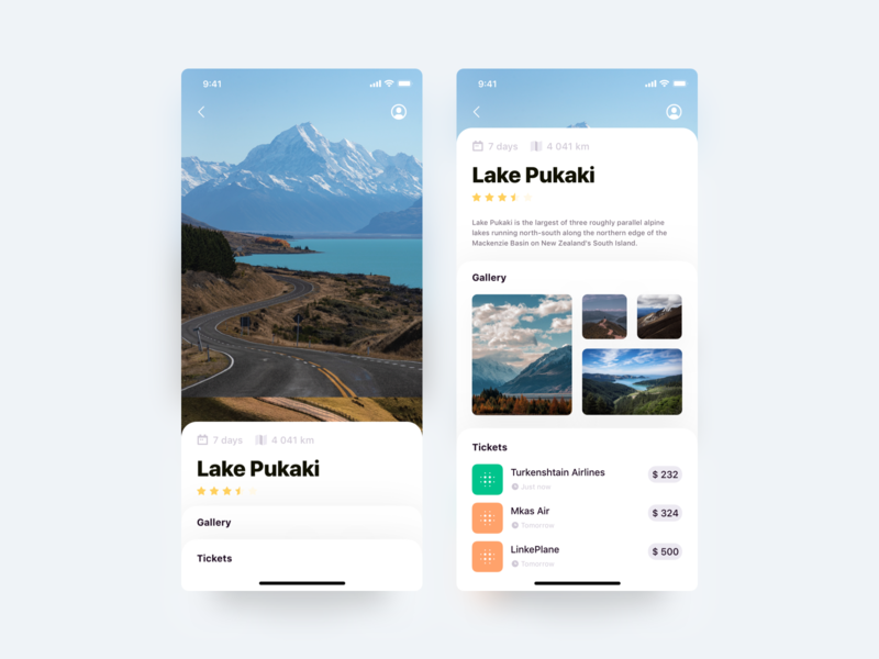 Travel App groups price cards about km stars gallery air ticket icon vector principle animation ux interface design ui travel