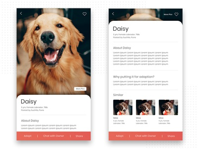UI Design for a pet company by BrandzGarage Design Agency