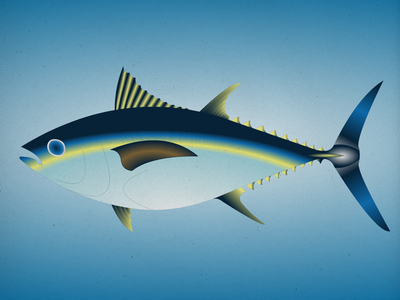 Endangered 13 Bigeyetuna 800 100dayproject the100dayproject 100endangeredspecies endangeredspecies illustration