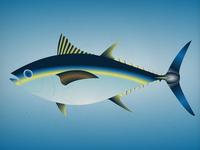 Endangered 13 Bigeyetuna 800