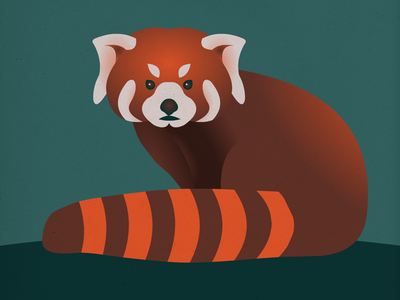 Endangered 14 Red Panda 100dayproject the100dayproject 100endangeredspecies endangeredspecies illustration