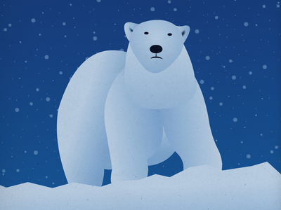 Endangered 20 Polar Bear 100dayproject the100dayproject 100endangeredspecies endangeredspecies illustration