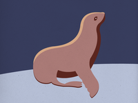 Endangered 23 Sea Lion