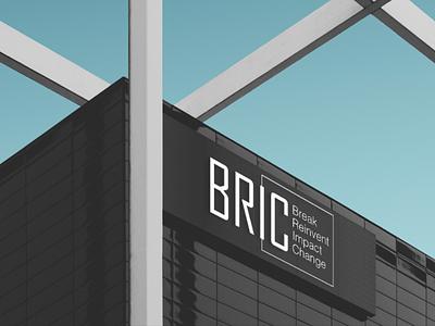 Brick Logo Design artdirection logos brandidentity graphicdesign graphic company service branding design logo bric