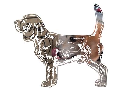 Hank aka Beagle Juice - 1 hank dog photography key west tshirt beagle