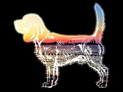 Hank aka Beagle Juice - 5 hank dog photography beagle tshirt key west