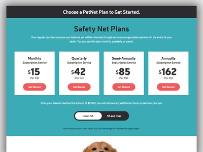 Pricing Levels button website toggle design tiles levels grid pricing