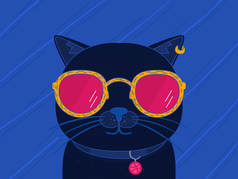 Hello Dirbbble illustration vector dirbbble hello cat