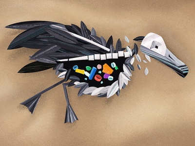 Albatross photoshop style frame