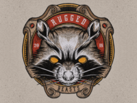 Raccon illustration