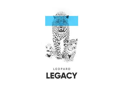 Leopard Legacy minimalistic blue light simple brand legacy black and white monochrome leopard animal white minimal clean branding typography design