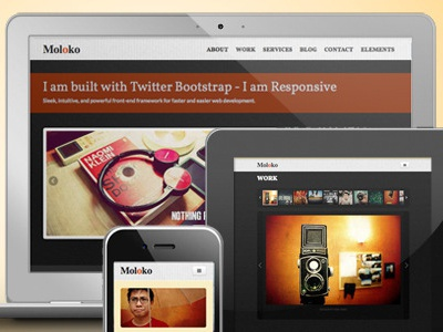 Moloko - Responsive One Page Html5 Template web design responsive html5 template themeforest one page template