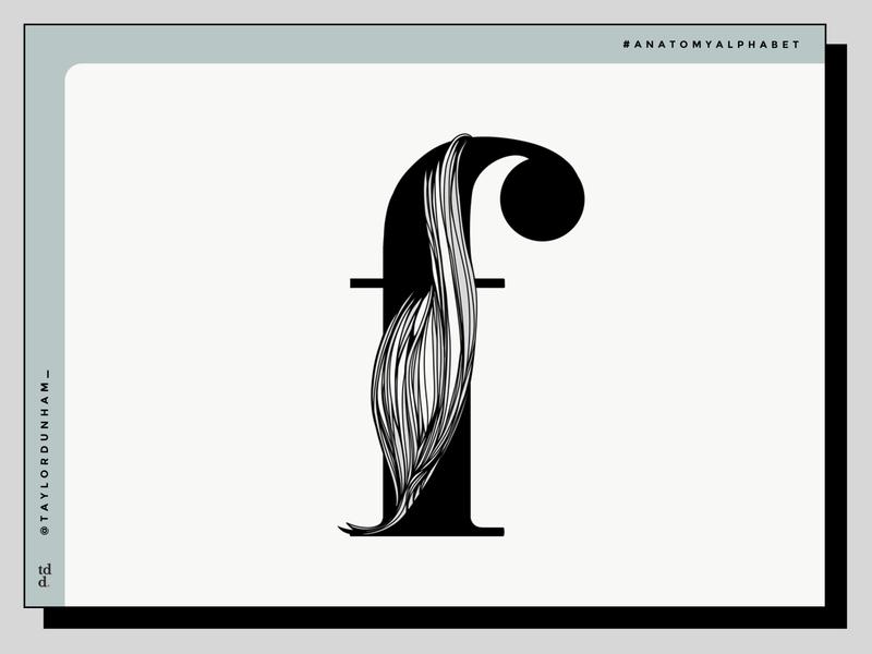 An Anatomy Alphabet: F is for flexor pollicis longus. illustration typography design typography type lettering illustrator designer design anatomy alphabet anatomy 36 days of type 36daysoftype