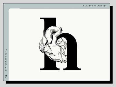 An Anatomy Alphabet: H is for heart. 36 days of type 36daysoftype anatomy anatomy alphabet design designer illustration design 36 days of type lettering illustrator type typography typography design