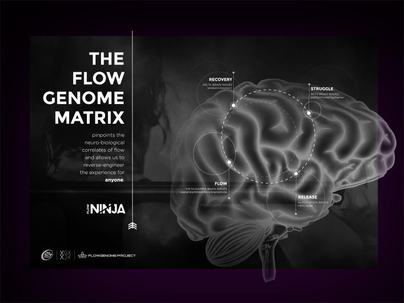 Ninja flow genome poster