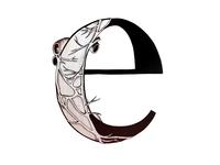 E Is For Esophogeal Plexus
