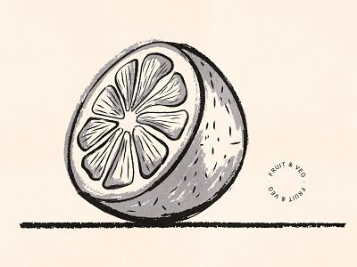 Inky Orange citrus vector ink orange brush texture food drawing fruit illustration