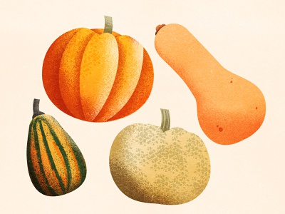 Pumpkin, Gourds and Winter Squash texture illustrations drawing gourds health winter autumn gourd pumpkin squash vegetables food grain illustration
