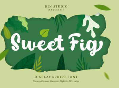 Sweet Fig - Handwritten font icon logo script signature font script font lettering handlettering font fonts logo type typography branding