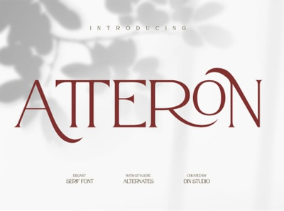 Atteron - Modern serif font clean display serif font fonts logo type typography branding