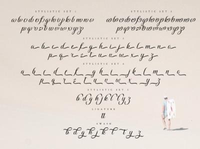 Windey Signature - Modern Script Font elegant font script font modern font logo illustration design lettering handlettering font typography logo type fonts branding