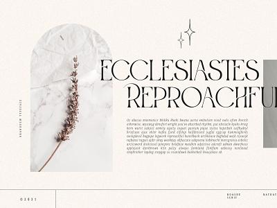 ROASHE - A New Serf Typeface modern font brand font new font serif font serif logo design font logo type fonts branding