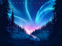 Auroral Forest illustration