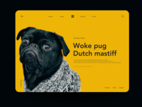 Woke Pug