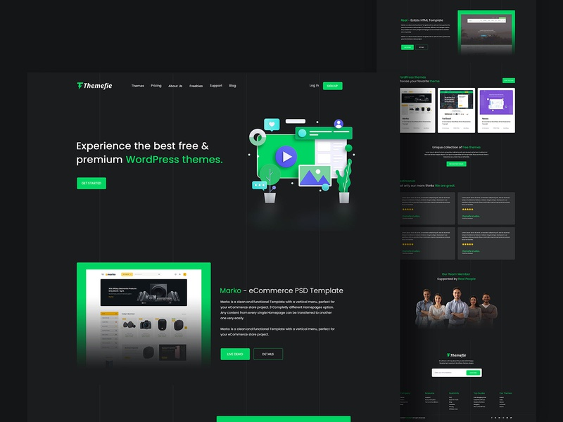 Themefie - Landing page design