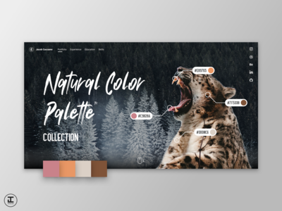 Natural Color Palette Collection